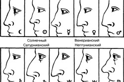 Планетарные формы носа