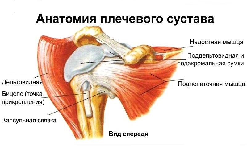 артроскопическая стабилизация плечевого сустава реабилитация