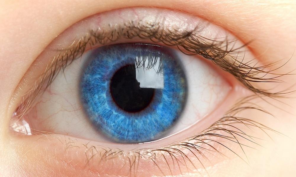Проблема болезни глаз