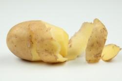 Польза картофеля при лечении варикоза