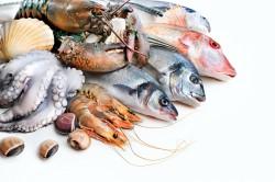 Польза морепродуктов для щитовидки