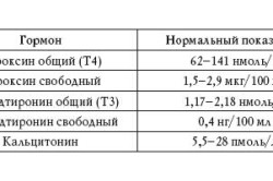Нормы гормонов щитовидной железы