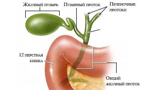 Воспаление косточки большого пальца ноги: лечение бурсита