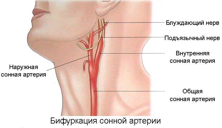 Физические упражнения при облитерирующем атеросклерозе нижних конечностей